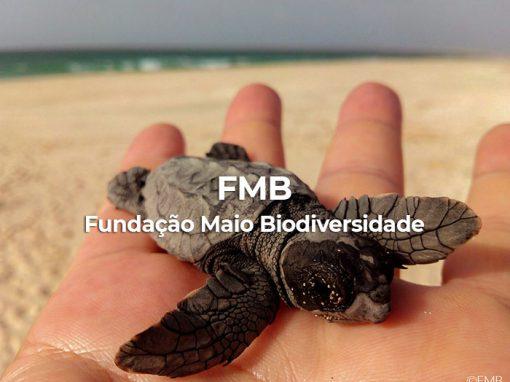 FMB Maio