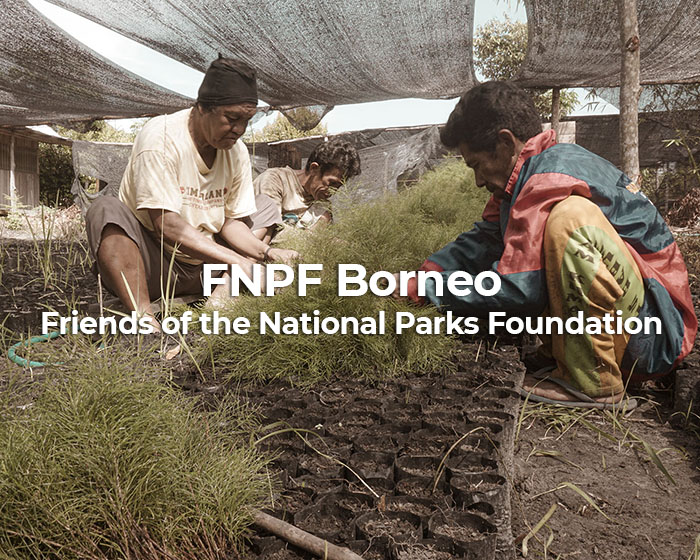 Friends of the National Parks Borneo