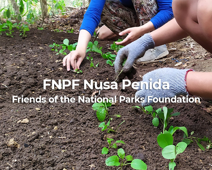 Friends of the National Parks Foundation Nusa Penida