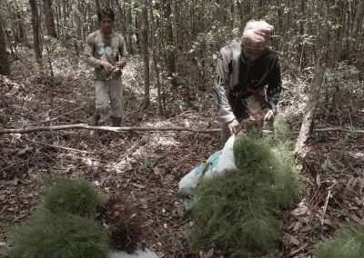 Friends of the national parks looking for seeds borneo