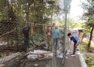 FNPF friends of the national parks Bali volunteer cleaning cage
