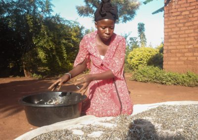 Project picture Sustain ME Uganda woman working on her fish business
