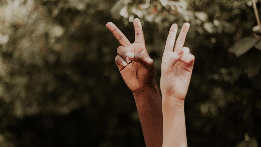 peace Zeichen vor grünem baum schwarze und weiße hand