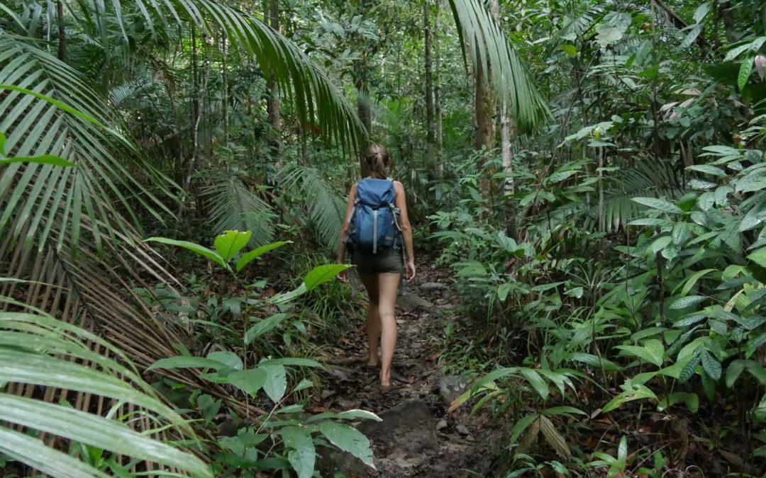 Nachhaltiges Reisen über den Bambusstrohhalm hinaus