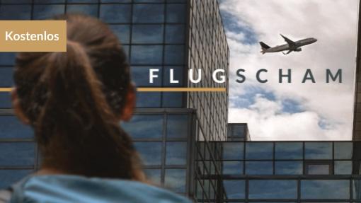 Flugscham Kurs Banner