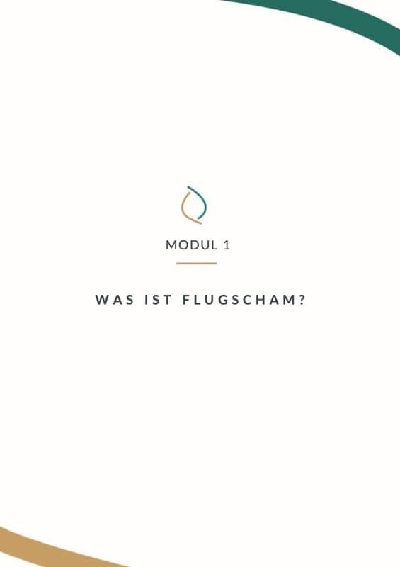 Flugscham-Kurs-Guide-Seite-3