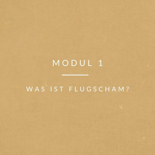 Modul1-Flugscham Was ist Flugscham
